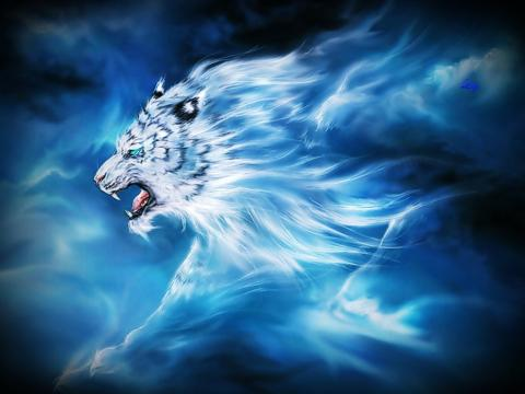 http://www.lightforcenetwork.com/sites/default/files/mystic-tiger-wallpaper-yvt.jpg
