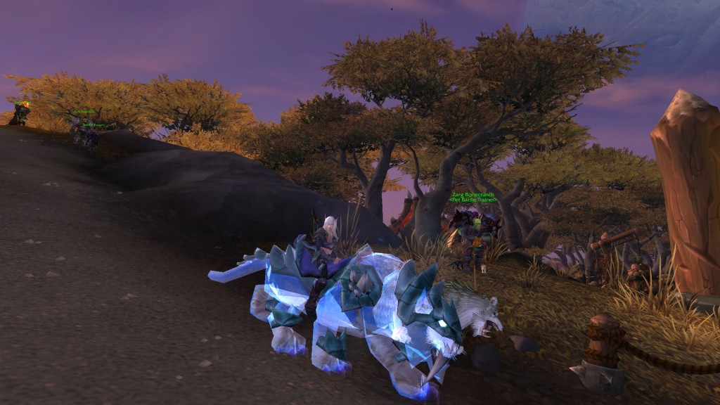 Cat with her Spectral Tiger Mount