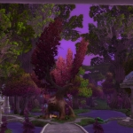 Warcraft Items Removed in Battle for Azeroth from Darnassus and Teldrassil