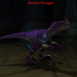 Warcraft Hatchlings Gold